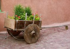 a wagon planter in an alleyway    taos|nm
