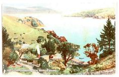 Coloured postcard of Port Fitzroy Harbour Great Barrier Island. - 45607 - Postcard - Postcards Auckland Suburbs - Postcards New Zealand - Postcards By Country - EASTAMPS Auckland New Zealand, Postcards, Island, Country, Painting, Color, Rural Area, Painting Art, Colour