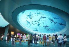 Miami's New Science Museum to Feature an Incredible 500000 Gallon Gulf Stream Aquarium - Travel Miami - Ideas of Travel in Miami Miami Beach, South Beach, Aquarium Architecture, Museum Architecture, Florida Vacation, Miami Florida, Miami Attractions, American Airlines, Science Museum