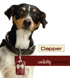 Coordinating blanket Dapper design