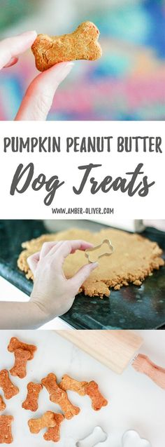 Pumpkin Peanut Butter Dog Treats are the perfect way to reward your dog. Simple ingredients and adorable cookie cutters create healthy, homemade dog treats.