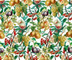 Vintage Fruit fabric by anom-aly on Spoonflower - custom fabric Custom Fabric, Spoonflower, Fabric Design, Fabrics, Gift Wrapping, Colorful, Printed, Fruit, Wallpaper
