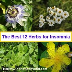 Natural Remedies For Sleep Discover the Best 12 Herbs for Insomnia. I need to remember this. i have 4 of these at home alreadY! - These foods are scientifically proven to put you to sleep quickly Insomnia Remedies, Natural Sleep Remedies, Natural Herbs, Natural Healing, Natural Life, Herbs For Sleep, Natural Sleeping Pills, Herbs List, Insomnia