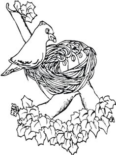 printable pictures of birds free printable coloring page coloring pages bird nest 1 birds. Black Bedroom Furniture Sets. Home Design Ideas