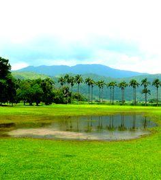 Hacienda del #RonSantaTeresa, El Consejo Edo #Aragua, #Venezuela - https://www.google.com/maps/place/Hacienda+Santa+Teresa/@10.236926,-67.290504,12102m/data=!3m1!1e3!4m5!3m4!1s0x8c2a9a3724504f13:0xcc0afb1bccc7a9c7!8m2!3d10.2369261!4d-67.2554683