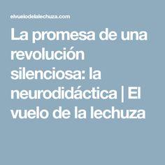 La promesa de una revolución silenciosa: la neurodidáctica | El vuelo de la lechuza