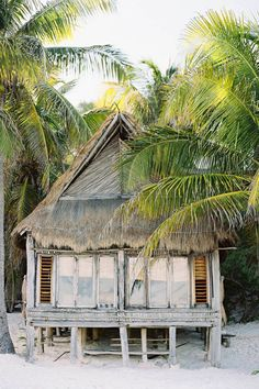 Palm thatched roof beach cottage..rustic...palms