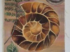 Obraz Amonit