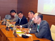 Un estudio analiza el aceite de oliva en los 47 países productores del mundo