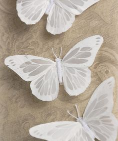 Look at this White Butterfly Clip - Set of Three on #zulily today!