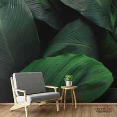 The Tropical Leaves has different greens tropical leaves added artistically to transform your place into a tropical paradise. Amazing Greens, Fresh Green, Tropical Paradise, Tropical Leaves, Palms, Green Leaves, Your Space, Design Trends, Corner