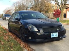 2004 Nissan Maxima, Body Kits, Don't Settle, Richmond Hill, Nissan Altima, Jdm, Ontario, Skirts, Pictures