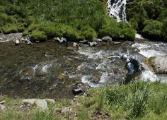 Pro Tip: How to Fish Behind a Midstream Rock | Orvis News