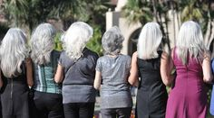 The Revolution Will Not Be Colorized: Silver Sisters Strut Against 'Beauty Terror' – Times of San Diego