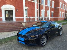 Grabber Blue Stripes on 2015 Ford Mustang GT Fastback are a Must-Have [Photo Gallery] - autoevolution