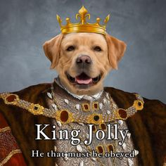 """In this king portrait your pet will ooze canine leadership? ⭐⭐⭐⭐⭐  """"Very professional service and our pet portrait  was beautifully presented & delivered-would highly recommend."""" Joseph B. King Painting, Old Paintings, Period Costumes, Unusual Gifts, Tile Art, Beautiful Artwork, Pet Portraits, Ceramic Art, Your Pet"""