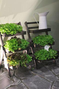 Salaattitikkaat :)