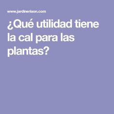 ¿Qué utilidad tiene la cal para las plantas?