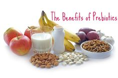 How Prebiotics Benefit Gut Health – Prebiotics are essential in the diet as functional foods to nourish and strengthen beneficial microbes known as probiotics. Nutrition Data, Health And Nutrition, Health And Wellness, Holistic Wellness, Prebiotic Foods, Prebiotics And Probiotics, Improve Gut Health, Best Probiotic, Shake Diet