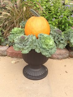 Planting a versatile Fall Planter with Ornamental Kale adding an Orange Pumpkin
