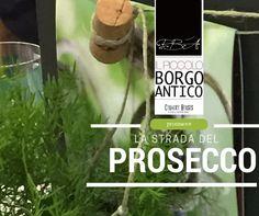 Collegamento permanente dell'immagine integrata Prosecco, Country, Rural Area, Country Music