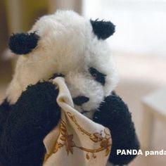 Cute Little Animals, Cute Funny Animals, Panda Funny, Baby Panda Bears, Cute Panda Wallpaper, Panda Wallpapers, Panda Art, Funny Animal Pictures, Animals Beautiful