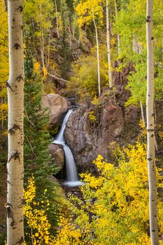 Nellie Creek Falls @- Lake City, Colorado