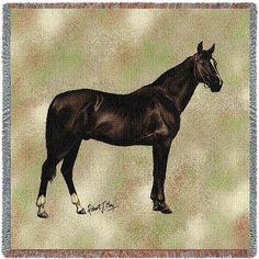 Anglo Arabian Horse Throw