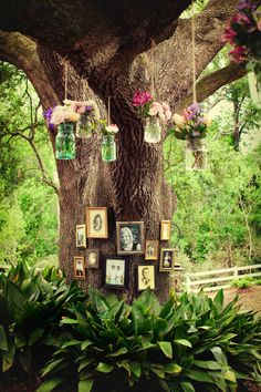 Not liking the pics on the tree but love the mason jars with flowers hanging from the tree!!