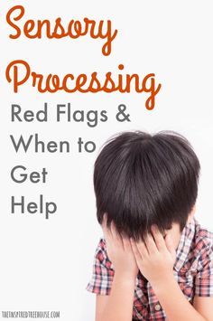 Today, we'll discuss sensory red flags - behaviors related to sensory integration that might indicate that it's time to get some expert advice. Sensory System, Sensory Bins, Sensory Activities, Sensory Wall, Sensory Bottles, Toddler Activities, Sensory Disorder, Sensory Processing Disorder Treatment, Sensory Processing Disorder Toddler
