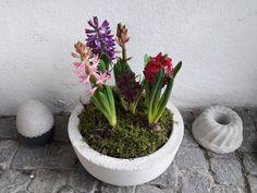 Petra, Planter Pots, Farmhouse, Garden, Rural House, Garten, Lawn And Garden, Cottages, Outdoor