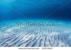 Underwater shoot of an infinite sandy sea bottom with clear blue water and waves on its surface by Dudarev Mikhail, via ShutterStock Underwater Photos, Infinite, Shots, Surface, Waves, Sea, Stock Photos, Blue, Outdoor