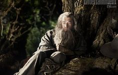 Images from The Hobbit
