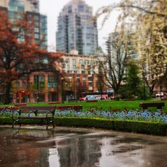Rainy Park Outside Vancouver Pacific Central Train Station