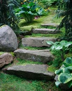 Cheap Raised Garden Beds, Easy Garden, Unique Gardens, Beautiful Gardens, Garden Bed Layout, Hillside Landscaping, Sloped Landscape, Garden Stairs, Conifer Trees