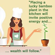 Applying Feng Shui to Your Kitchen for Prosperity in Life