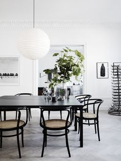 Bentwood Chairs in Modern Dining Rooms Dining Room Inspiration, Interior Design Inspiration, Interior Ideas, Modern Interior, Bentwood Chairs, Dining Chairs, Dining Area, Room Chairs, Cane Chairs
