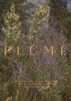 Plume- a minimal and elegant premade branding package for a fashion or beauty salon brand. Graphic Design Layouts, Graphic Design Studios, Graphic Design Posters, Graphic Design Inspiration, Typography Design, Layout Design, Branding Design, Logo Design, Logo Branding