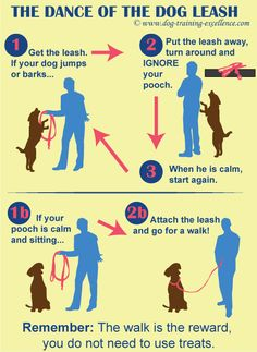Learn German dog commands and have a well behaved dog! Using dog training commands in a different language can help your dog learn faster! Find them all here. Puppy Training Classes, Puppy Training Tips, Training Your Dog, German Dog Commands, Leash Training, Crate Training, Potty Training, Agility Training, Toilet Training