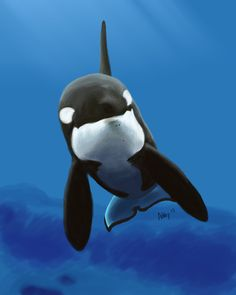 Speed paint by albino-orca on DeviantArt