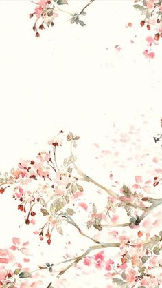 Pink white cream illustrated watercolour blossoms floral iphone wallpaper phone background lock screen