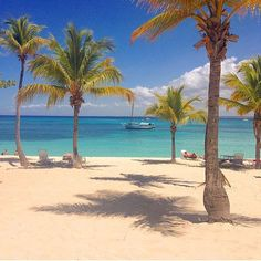 Catalina Island, Doninican Republic | Source: @worldwidetravelog | Follow us | #luxuryhotel#boutiquehotel#luxury#luxurylife#colors#luxurytravel#instadaily#travel#travelingram#picoftheday#vacation#nofilter#instagood#instahappy#instalove#instamood#instalike#beachholiday#followme#love#wonderlust#boat#luggage#nature#relax#paddleboarding#yoga#blue#surf#emerald