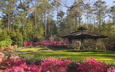 Callaway Brothers Azalea Bowl Callaway Gardens 17800 US Hwy 27 Pine Mountain, GA 31822 1.800.225.5292