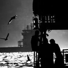 #photography #blackandwhite #bnw #InstaTags4Likes #instablackandwhite #monochrome #monoart #insta_bw #bnw_society #bw_lover #bw_photooftheday #photooftheday #bw #instagood #bw_society @appslejandro #bw_crew #bwwednesday #insta_pick_bw #bwstyles_gf #irox_bw #igersbnw #bwstyleoftheday #monotone #monochromatic#noir #fineart_photobw