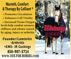 20% off Till December 20th, 2014. US Mailing addresses only.  go to www.soxforhorses.com or call us at 850-907-5724 Edema Causes, Arthritis, Mud, Trail, Coupon, December, Horses, Summer, Life