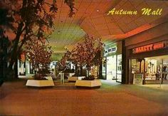 Park City Mall, Lancaster, Pa. ~ hang out with friends, 1970's