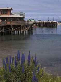 Fisherman's Wharf, Monterey--Monterey, CA is a wonderful town to visit.