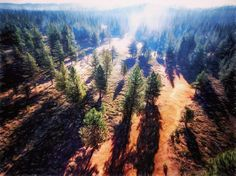 The View From Bob: Truckee CA Bob is my quadcopter. He sees things I can't... yet I can through those eyes in the sky.  They are things I've dreamed of imagined like they were real. And now... I can show what I saw in my dreams.   Dreams are real.   @djiglobal