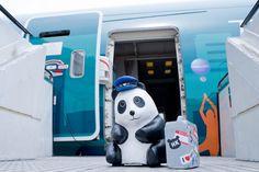 HONG KONG PANDA EXHIBITION