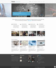 Frozen  |  Responsive, Corporate, Wordpress Template  |  themeforest  |  http://demo.miracsinir.com/frozen/